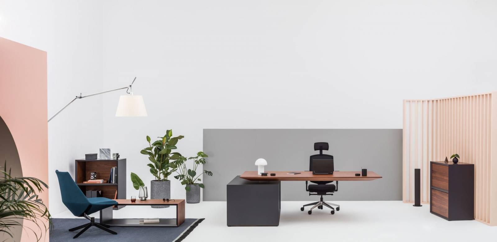 Bureau de direction, meuble de rangement, et table basse sur Marseille